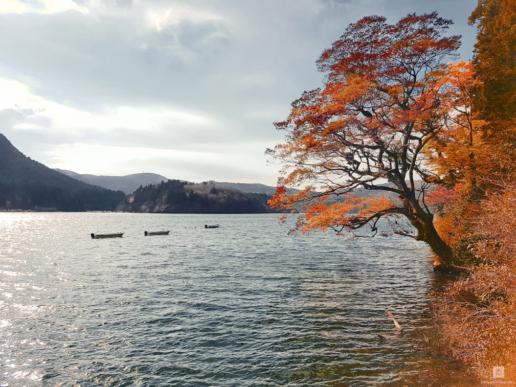 Япония, Момидзи-гари, Свадебный и фэшн фотограф в Италии Анна Баранова