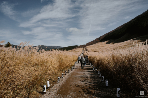 Best 1-day trips from Tokyo. Part III., Wedding and Fashion Photographer in Italy Hanna Baranava